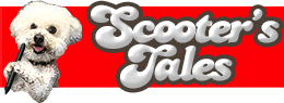 scooter tales